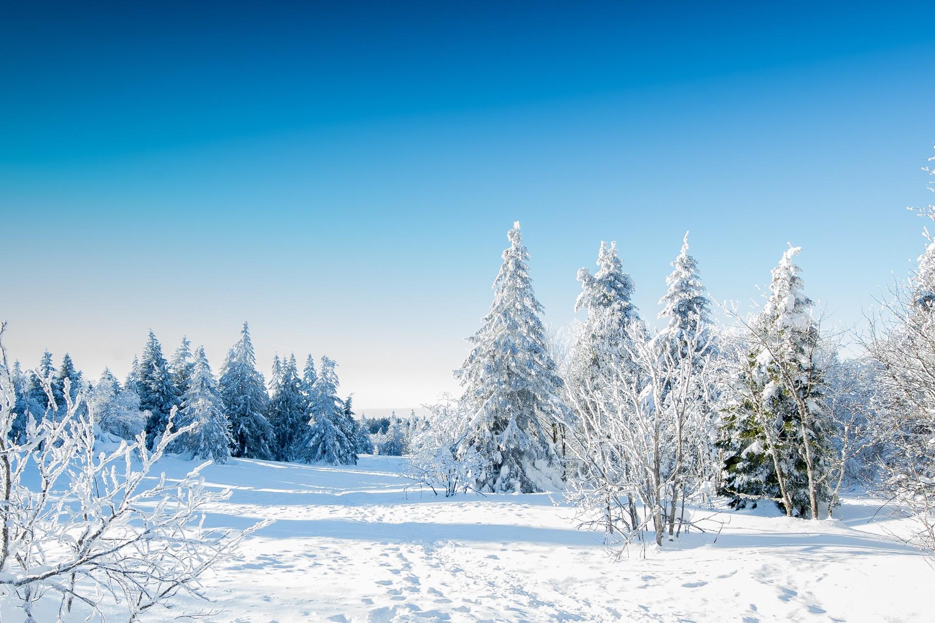 Zimowiska-z-EkspresBus1
